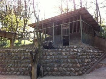 Alpuspark170.jpg