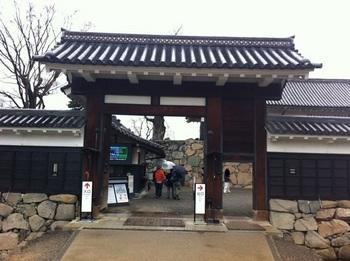 matsumotosakura09.jpg