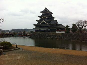 matsumotosakura13.jpg