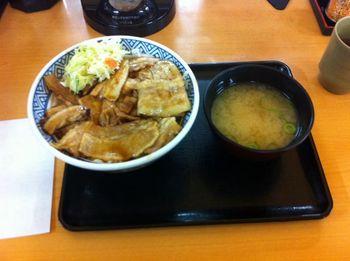 yoshinoya07.jpg