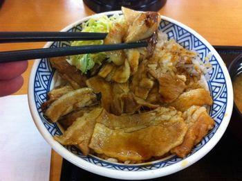 yoshinoya10.jpg